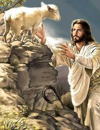 """""""Yo soy el buen Pastor, que conozco a las mías, y las mías me conocen, igual que al Padre me conoce, y yo conozco al Padre; yo doy mi vida por las ovejas"""""""