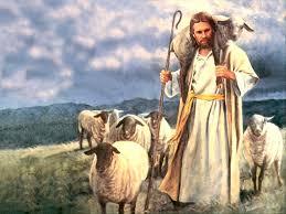 Mis ovejas escuchan mi voz, y yo las conozco, y ellas me siguen, y yo les doy la vida eterna; no perecerán para siempre, y nadie las arrebatará de mi mano.