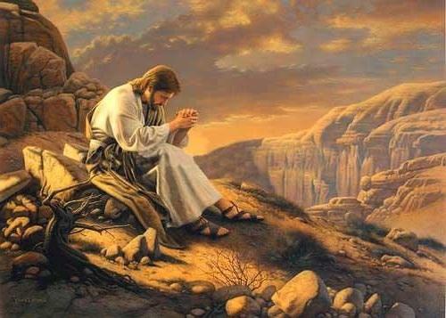 """""""El Espíritu empujó a Jesús al desierto. Se quedó en el desierto cuarenta días. Era tentado por Satanás; vivía entre alimañas, y los ángeles le servían"""""""